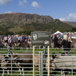 Swaledales on Show