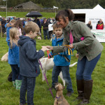 Children's Pet Show